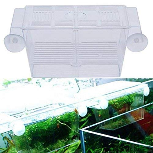 Yevison Aquarium Fish Tank Breeding Isolation Box Fish Breeder Hatchery Breeding Breeder Rearing Trap Box Durable and Useful by Yevison