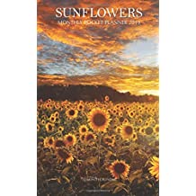 Sunflowers Monthly Pocket Planner 2019: 16 Month Calendar