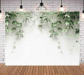 Green Plants Leaves Hanging On White Brick Wall Photography Backdrop 7x5ft Vivid Plants Photo Background Youtube Party Banner New Born Child And Adult Party Decoration Props Wm005 Camera Photo