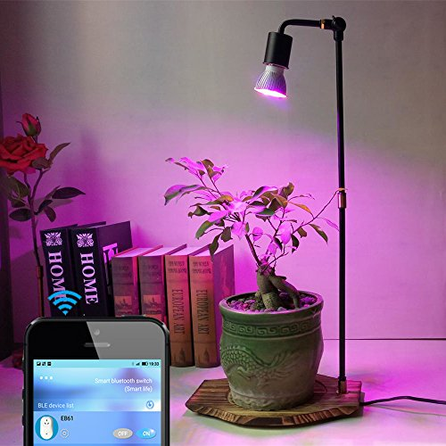 30W Full Spectrum LED Grow Lights Stand Wooden Base with Smart Automatic Timer Switch for Home Garden Indoor Plants Veg Flower (20Wx27L) by AiHihome