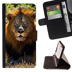 BullDog Case - FOR/HTC One M9 / - / lion sun summer mane Africa savannah nature /- Monedero de cuero de la PU Llevar cubierta de la caja con el ID Credit Card Slots Flip funda de cuer