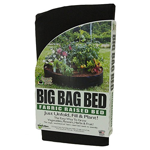 Best Raised Beds
