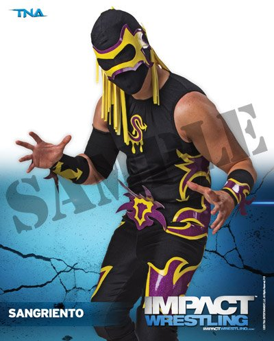 act Wrestling 8x10 Promo Photo ()