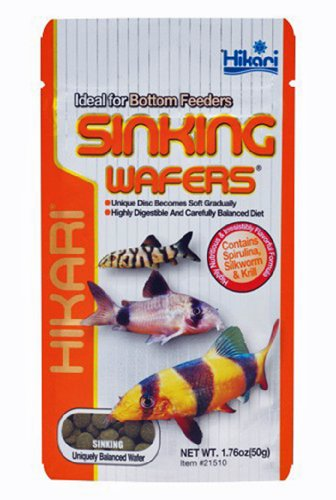 Hikari Sinking Wafers for Pets, 1.76-Ounce (Sinking Wafers)