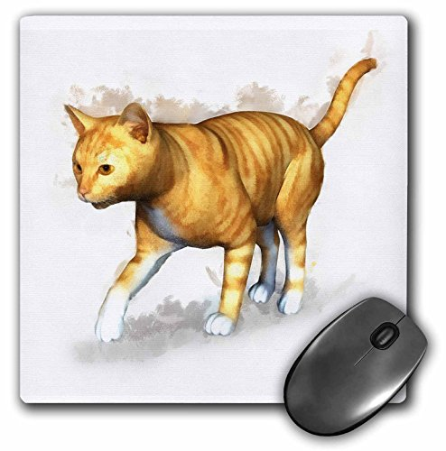 (3dRose Boehm Digital Paint Animal - Red Tabby - MousePad (mp_41474_1))