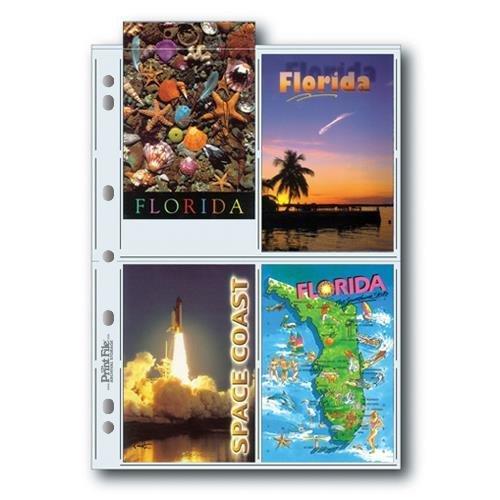 Print File 8mil Polypropylene Postcard Album Pages, 25 Pack