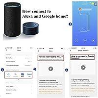 El detector de sensor de im/án de puerta de ventana inteligente funciona con Alexa Google Home IFTTT para el sistema de alarma de seguridad antirrobo con bater/ía 1 Pack