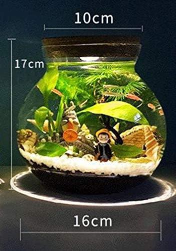 生態学的なボトル水槽マイクロランドスケープ丸いガラスの瓶水族館ボールナイトライトギフト,16cm