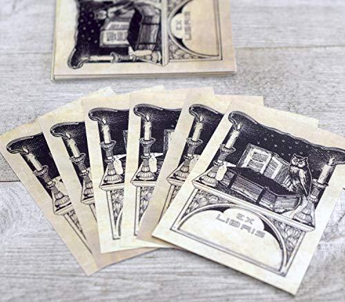 (Ex Libris Art Nouveau Owl Book Plates, Set of 24 Self-Adhesive)