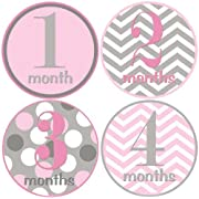 Baby Girl Month Stickers Pink and Grey Girl 1 -12 Monthly Milestone Stickers by Mumsy Goose