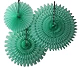 Hanging Honeycomb Tissue Fan, Mint, Set of 3 (13 inch, 18 inch, 21 inch)