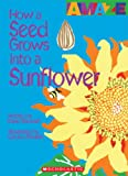 How a Seed Grows into a Sunflower, David Stewart, 0531204421