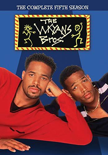 wayans brothers tv series - 8