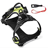SmilePowo Dog Harness Chest Back Strap Belt Mount Pet Vest for GoPro Hero 7 6 5 4 3 Black,Hero 2018 Session Fusion,AKASO, Xiaomi, DBPOWER, Lightdow, Sports Action Camera for Dogs Night Walk Reflection