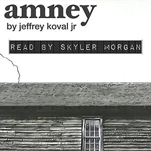 Amney Audiobook