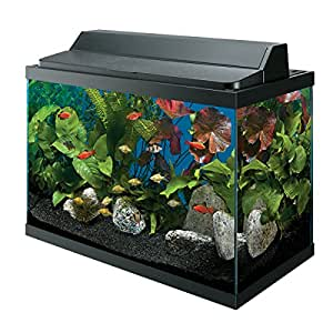 All glass aquarium aag10029 tank 29 gallon for 29 gallon fish tank