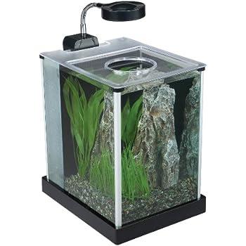 Fluval SPEC Desktop Glass Aquarium, 2-gallon
