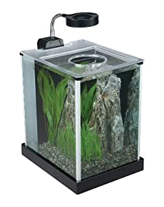 Fluval SPEC Desktop Glass Aquarium, 2-gallon