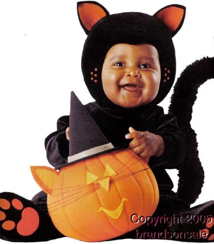 [Baby Tom Arma Black Cat Costume (Size: 24 Months)] (Tom Arma Pumpkin Costumes)