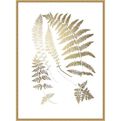 Golden Fern II Framed Print ()