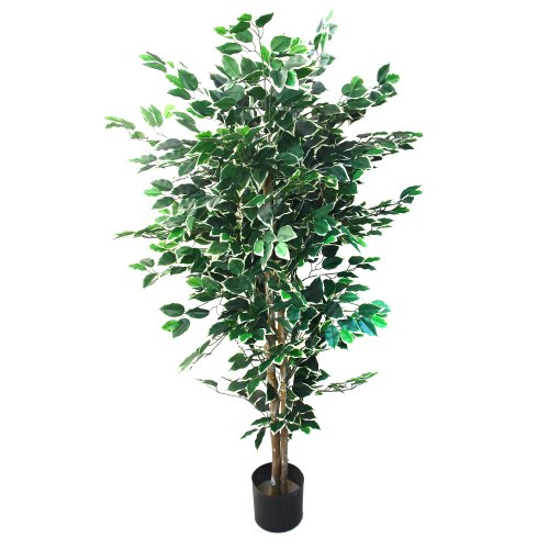 Ficus Tree (Artificial Ficus Tree with Variegated Leaves and Natural Trunk, Beautiful Fake Plant for Indoor-Outdoor Home Décor-5 ft. Tall Topiary by Pure Garden)