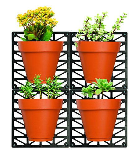 Ideaworks Wall-Mount Planter Set-Decorate Wall with Real Plants - Includes 4 Wall Mounts & 4 Planters-Great for Indoor & Outdoor Walls - Includes Installation Hardware by IdeaWorks