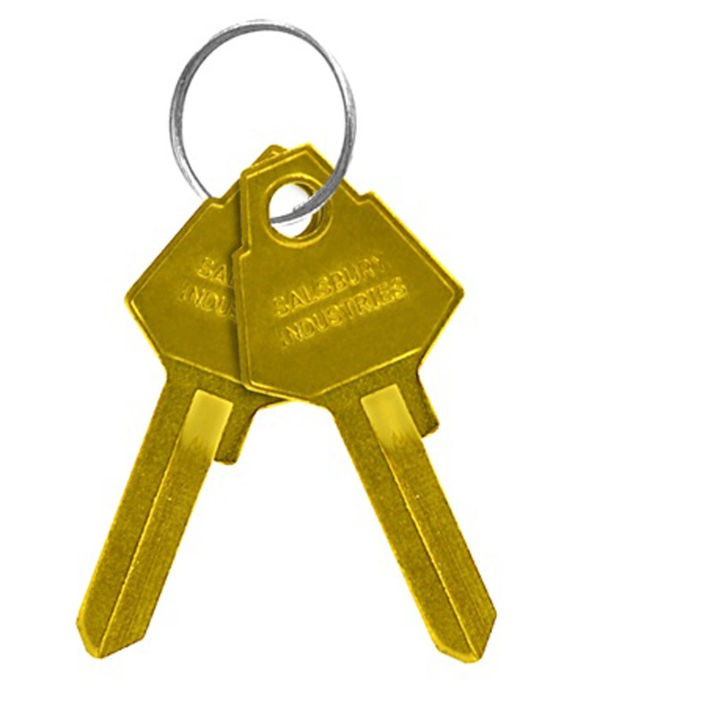 Salsbury Industries 11125 Key Padlock with Gold Finish Hasp for Solid Oak Executive Wood Locker Door