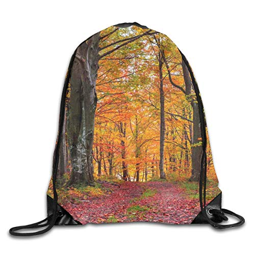 (Drawstring Backpacks Bags,Fall Forest With Shady Deciduous Trees And Faded Leaf Magic Woodland Picture,5 Liter Capacity,Adjustable)