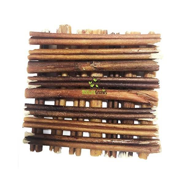 Nature Gnaws Small Bully Sticks - 100% Natural Grass-Fed Free-Range Premium Beef Dog Chews - Single Ingredient & Long Lasting Chew Treats for Dogs 2