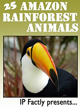 25 Amazon Rainforest Animals. Amazing facts, photos and video links to some of the most amazing animals from the rainforests! (25 Amazing Animals Series Book 17) by [IC Wildlife, Factly, IP]