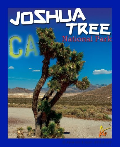 National Monument Postcard (Best Ultimate Iron On Joshua Tree Travel Collectable Souvenir Patch - National Parks & Monuments Souvenir Postcard Type Quality Photos Graphics - Joshua Tree)