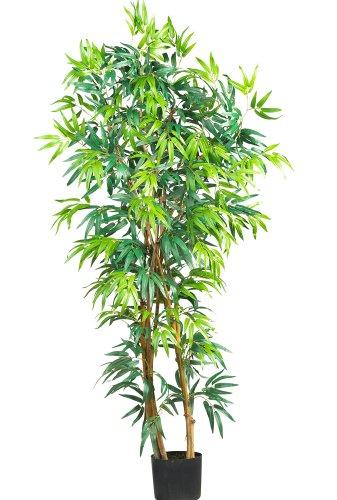 5' Bamboo Tree - 2