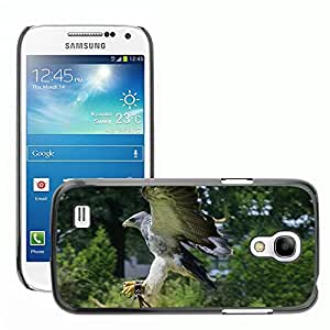 Hot Style Cell Phone PC Hard Case Cover // M00113655 Bird Of Prey Birds Nature Eagle // Samsung Galaxy S4 Mini i9190
