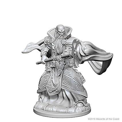 D&d Nolzur?s Marvelous Unpainted Minis: Human Male Wizard