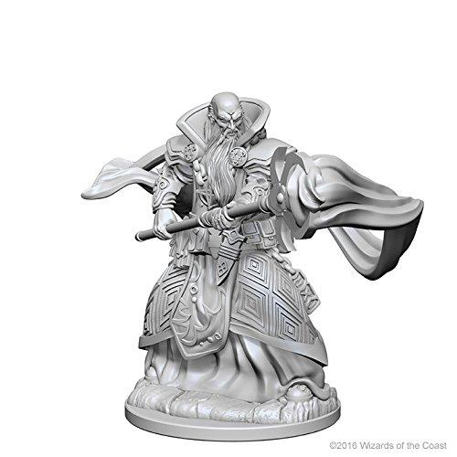 (D&d Nolzur?s Marvelous Unpainted Minis: Human Male Wizard)