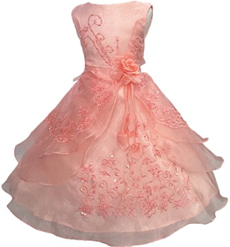 Shiny Toddler Big Girls Embroidered Beaded Flower Girl Birthday Party Dress with Petticoat 13t-14t,Peach -