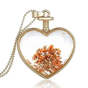 Sharefashion Transparent Golden Heart-shaped Locket Pendant Necklace Perfume Modeling (SF-150N42)