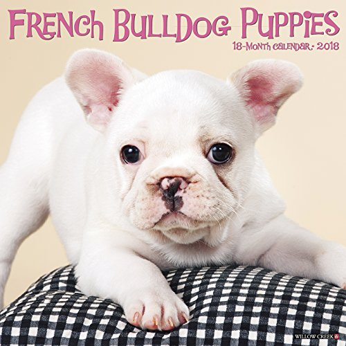French Bulldog Puppies 2018 Calendar (Bulldog Puppies)