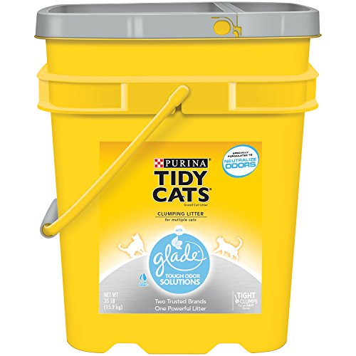Tidy Cats Cat Litter, Clumping, Glade, 35-Pound Pail, Pack of 1 (Tidy Cat 35 Lb Cat Litter compare prices)