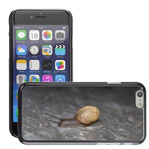 """Bild Hart Handy Schwarz Schutz Case Cover Schale Etui // M00135408 Schnecke Tier Natur // Apple iPhone 6 PLUS 5.5"""""""