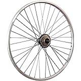 Taylor Wheels 28 pouces roue arrière vélo YAK19 roue libre à visser 7 argent