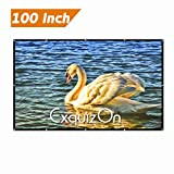 Exquizon 100 Inch 16:9 Collapsible White Portable Projector Cloth Screen with Hanging Hole for Home and Outdoor Use