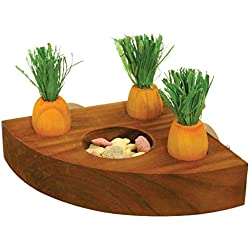 Carrot Toy 'n' Treat Holder - Hamster & Small Animal Toy