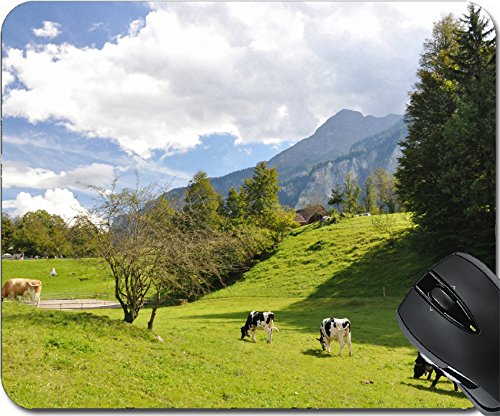 MSD Natural Rubber Mousepad Mouse Pads/Mat design: 12248875 Swiss scenery (Roof Chalet)