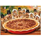 Avanti Press Thanksgiving Cards, 10 Count, A Little Nutty & Lot Thankful (701262)