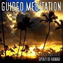 Guided Meditation Series: Spirit of Hawaii Speech by Kala Ambrose
