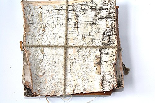 Natural Birch Bark. Bundle of 6 (8'' square) -