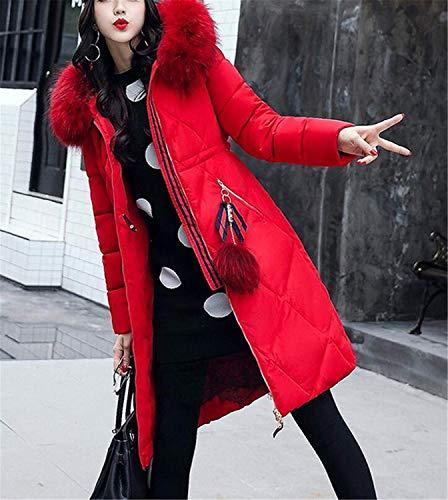 Piumino Chiusura Cappotto Colore Cerniera Incappucciato Trapuntata Huixin Eleganti Piumini Puro Donna A Caldo Cappotto Libero Fashion Autunno Lunga Giacca Rot Costume Invernali Tempo Invernali TRWOEARUwZ