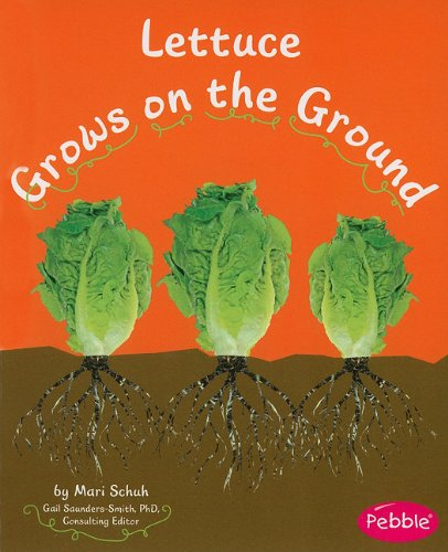 (Lettuce Grows on the Ground (How Fruits and Vegetables Grow))