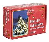 Idena 8325058 LED Lichterkette